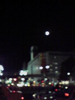 月が綺麗…