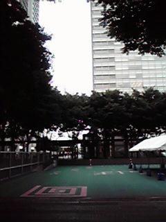 本日のストリート